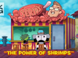 The Power of Shrimps