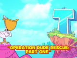 Operation Dude Rescue/Gallery