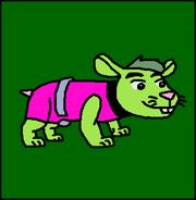 Hamster BeastBoy
