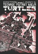 TMNT vol 1 issue 1 first print