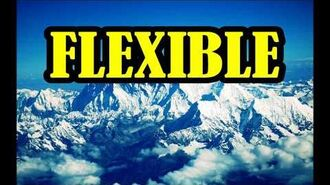Flexible INSTRUMENTAL-0