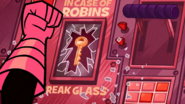 In Case Of Robins