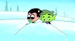 Robin e mutano na neve