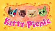 Kitty Picnic