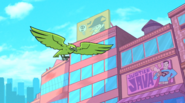 HawkBB