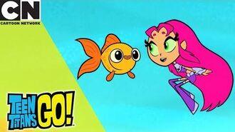 Teen Titans Go! Starfire And The Fish Cartoon Network UK 🇬🇧
