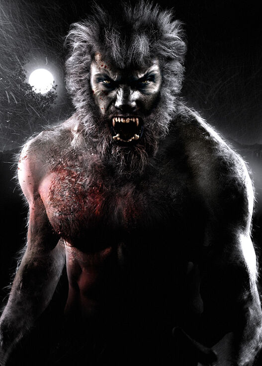 Wolf Man Spell | Teen Wolf Universe Wikia | FANDOM powered by Wikia