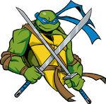 2509314-turtle360