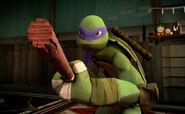 Donatello's Bandanna