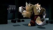Dogpound Lifting Weights