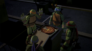 Turtles discover pizza