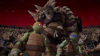 12 Zeno Turtles 1