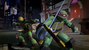 Turtles' first city fight