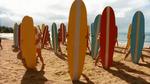 Surf Crazy (335)