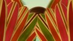 Surf's Up (482)