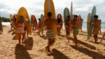 Surf Crazy (334)