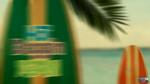Surf's Up (523)