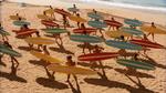 Surf Crazy (331)