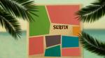 Surf's Up (491)