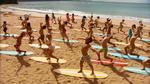 Surf Crazy (321)