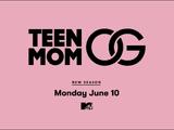 Season 8 (Teen Mom OG)