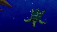 Beast Boy as Sea Turtle