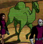 Beast Boy as Camel