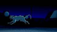 Beast Boy as Cat