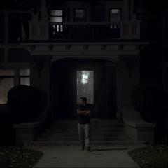 La maison des Walcott, Sean essaye de retrouver son chat.