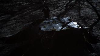 Teen Wolf Season 3 Episode 12 Lunar Ellipse Stiles and Nemeton Memory