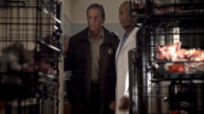 Teen Wolf Season 3 Episode 1 Tattoo Linden Ashby Seth Gilliam Sheriff Stilinski Dr. Deaton room full of dead cats