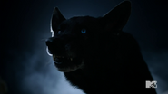 Teen Wolf Season 4 Episode 12 Smoke & Mirrors Derek Wolf growl