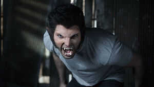 Derek Werewolf