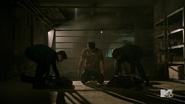 Fireflies - Scott, Derek, Isaac, Boyd, Cora