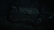 Wolf-pack-dead-Teen-Wolf-Season-6-Episode-11-Said-the-Spider-to-the-Fly