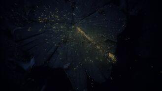 79-fireflies-1024x575