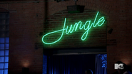 Jungle Nightclub