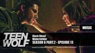 Waterstrider - Black Blood Teen Wolf 6x13 Music HD