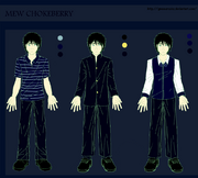 100306 Chokeberry Outfit Colored