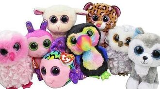 Beanie Boo Haul from Pat Catans Unboxing Toy Review TY Beanie Boos Plush