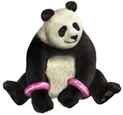 Panda05