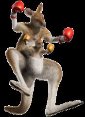 Tekken 5 Roger Jr.