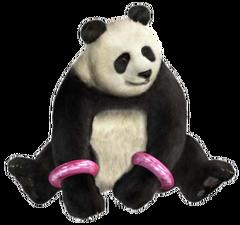 Tekken 5 Panda