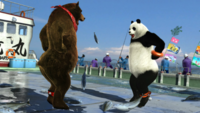 Kuma and Panda Dancing