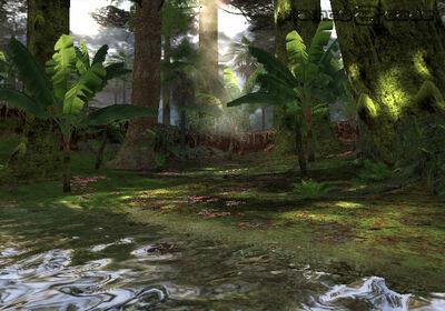 Tk4 jungle stage