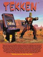 Tekken 1 Poster Paul