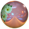 Boule de bowling alisa bosconovitch