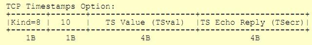 File:Tcp options.png