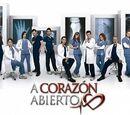 A corazón abierto (2011)