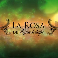 La Rosa de Guadalupe (La Red)